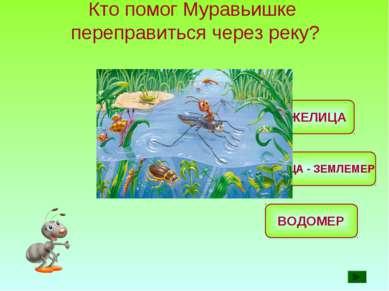 Кто помог Муравьишке переправиться через реку? ЖУЖЕЛИЦА ВОДОМЕР ГУСЕНИЦА - ЗЕ...