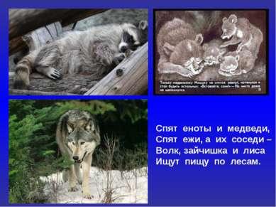 Спят еноты и медведи, Спят ежи, а их соседи – Волк, зайчишка и лиса Ищут пищу...