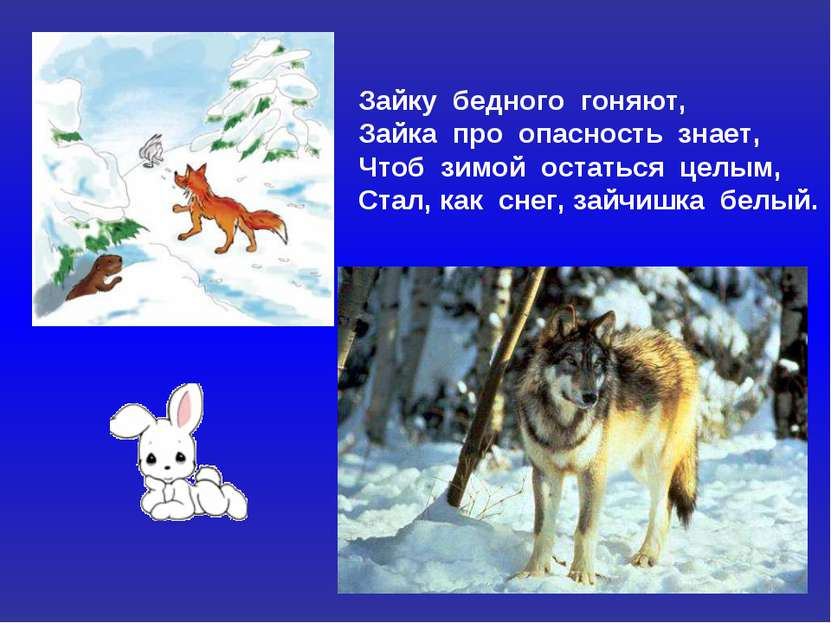 Зайку бедного гоняют, Зайка про опасность знает, Чтоб зимой остаться целым, С...