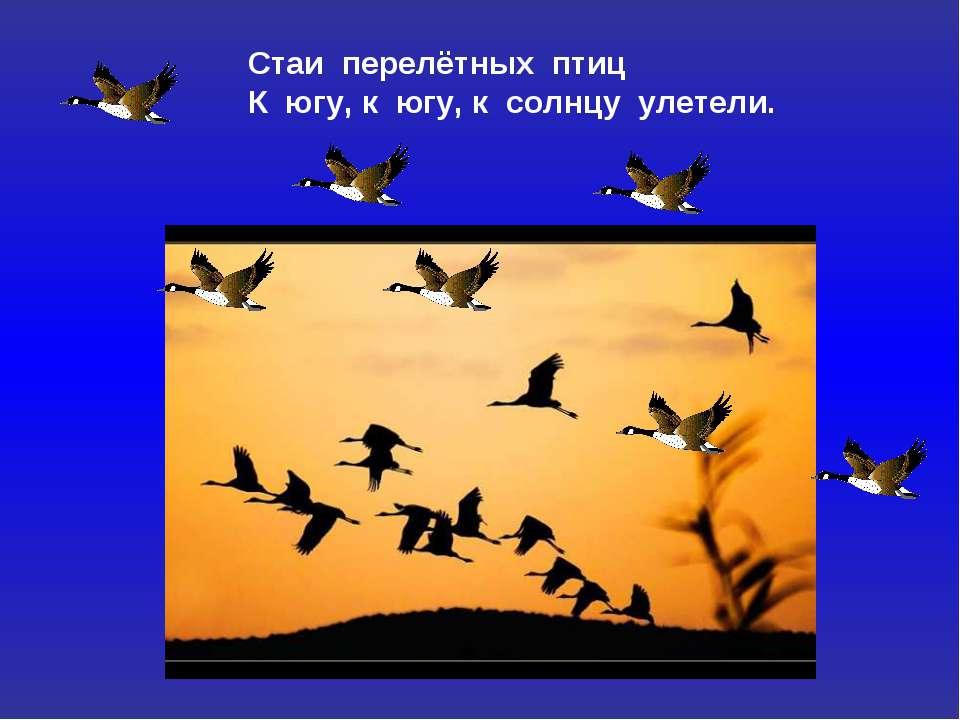 Стаи перелётных птиц К югу, к югу, к солнцу улетели.