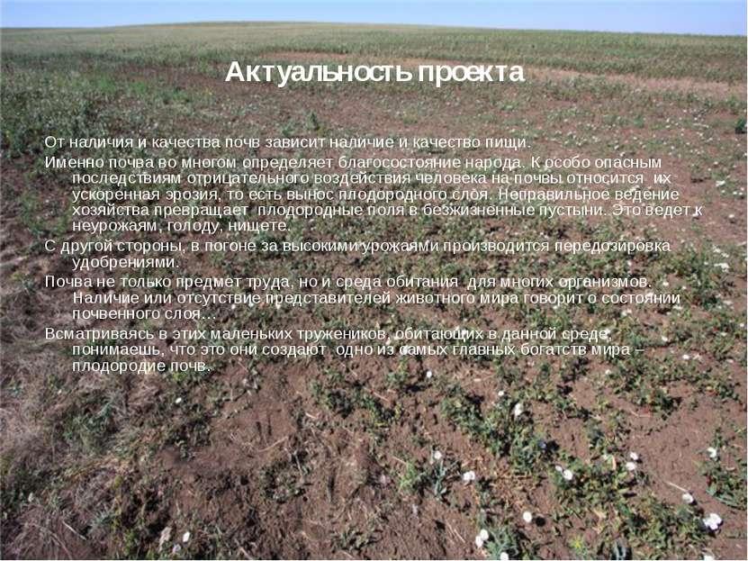 Актуальность проекта От наличия и качества почв зависит наличие и качество пи...