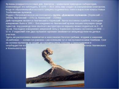 Вулканы рождаются и в наши дни. Камчатка—уникальная природная лаборатория, п...