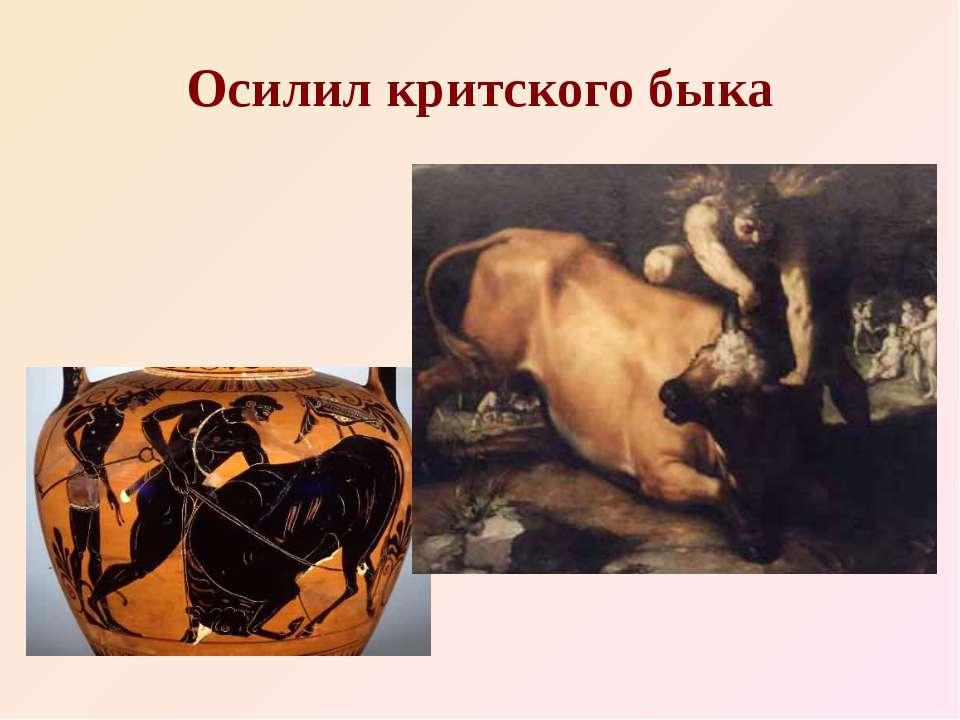 Осилил критского быка