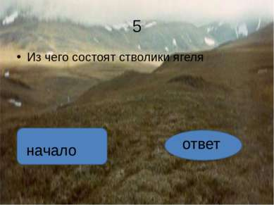 ответ А оленьим мхом этот невысокий кустарничек назвали потому, что в течение...