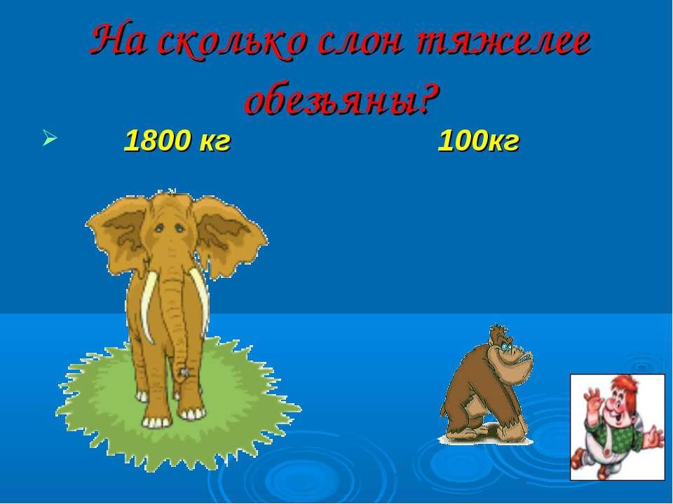 На сколько слон тяжелее обезьяны? 1800 кг 100кг