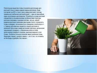 Питательные вещества почвы становятся доступными для растений только в виде ж...