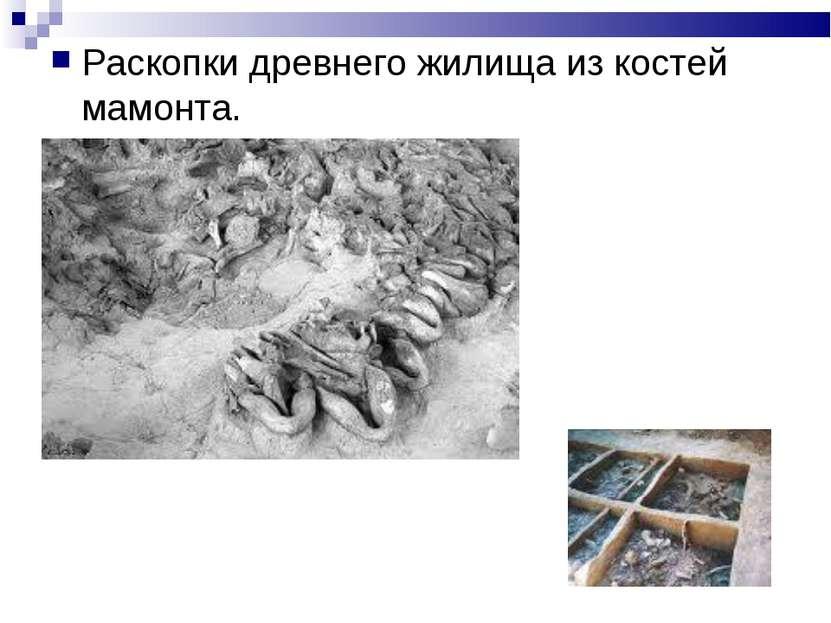 Раскопки древнего жилища из костей мамонта.
