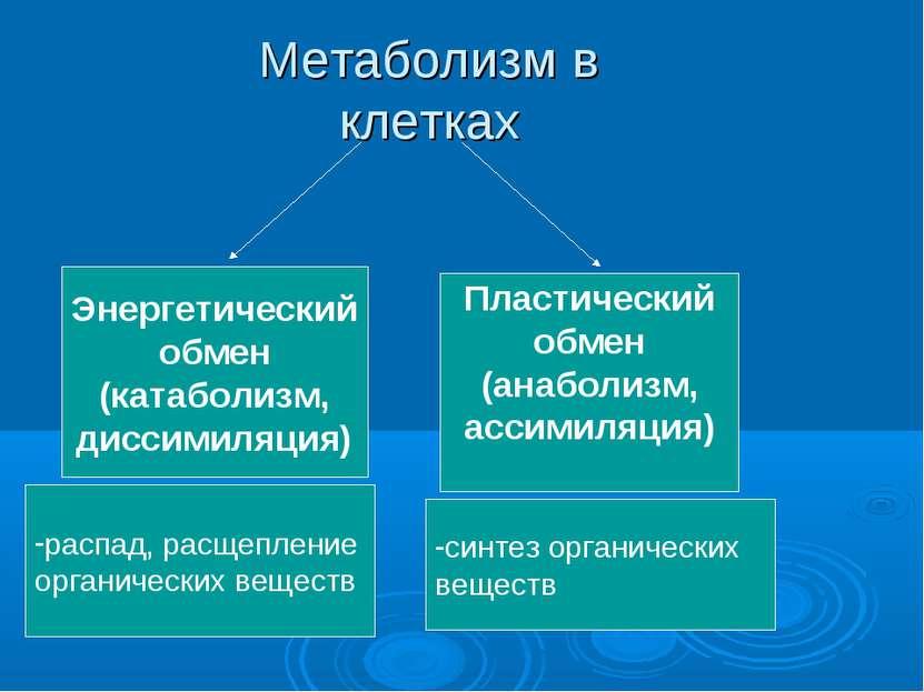Метаболизм в клетках Энергетический обмен (катаболизм, диссимиляция) Пластиче...