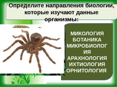 Определите направления биологии, которые изучают данные организмы: МИКОЛОГИЯ ...