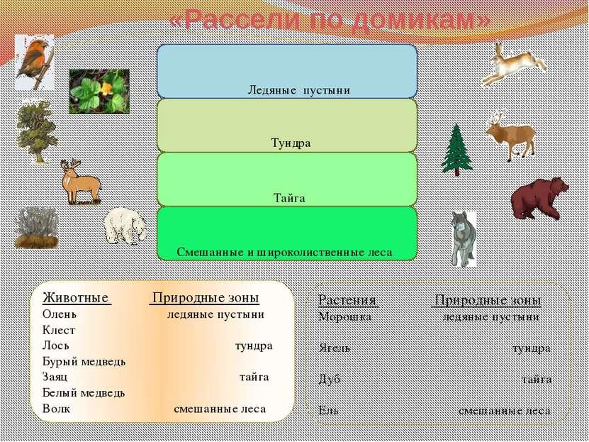 Ледяные пустыни Тайга Смешанные и широколиственные леса Тундра ? Степи Пустын...