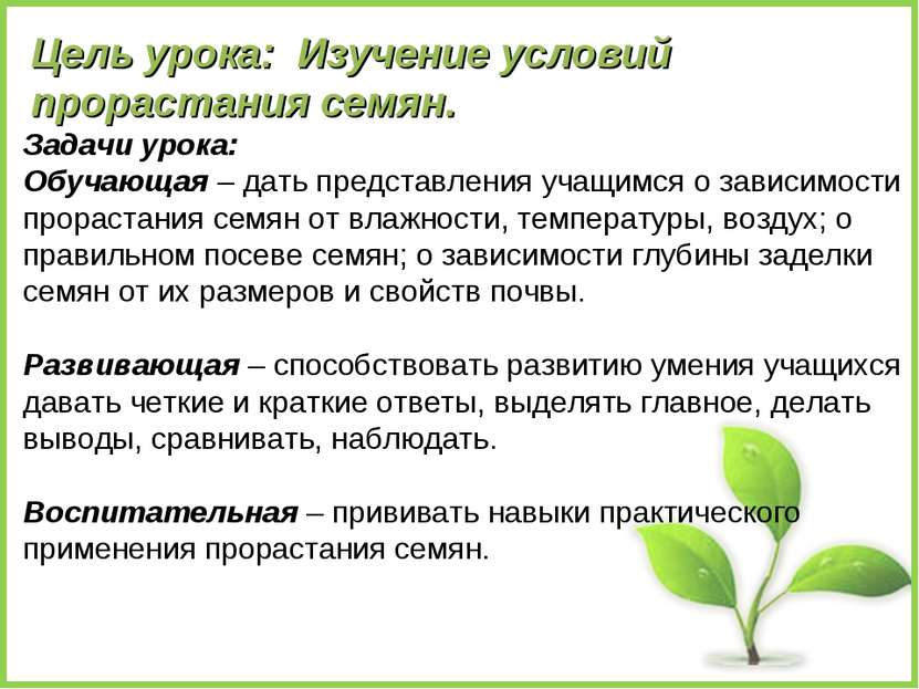 Цель урока: Изучение условий прорастания семян. Задачи урока: Обучающая – дат...
