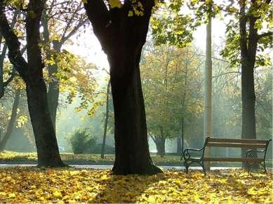 . Объяснительный диктант. Поздняя осень. Грачи улетели, Лес обнажился, поля о...