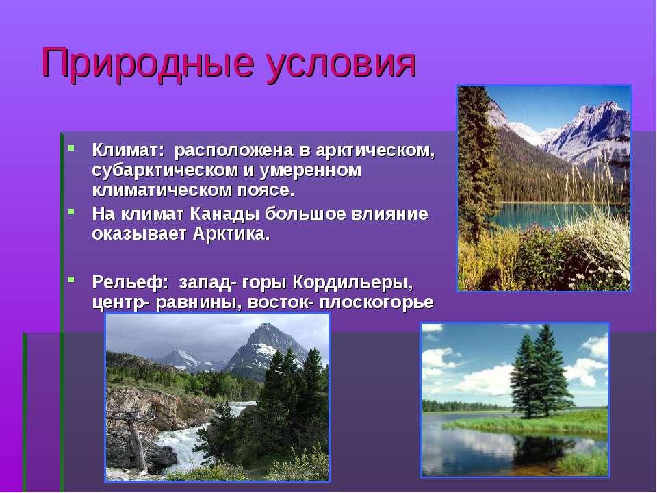 Природные условия Климат: расположена в арктическом, субарктическом и умеренн...