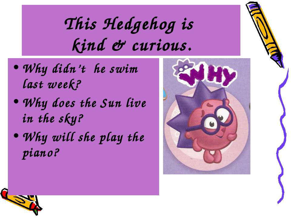 This Hedgehog is kind & curious. Why didn't he swim last week? Why does the S...
