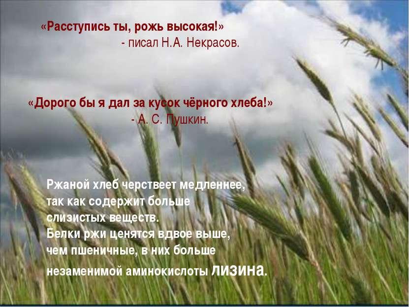 «Расступись ты, рожь высокая!» - писал Н.А. Некрасов. «Дорого бы я дал за кус...