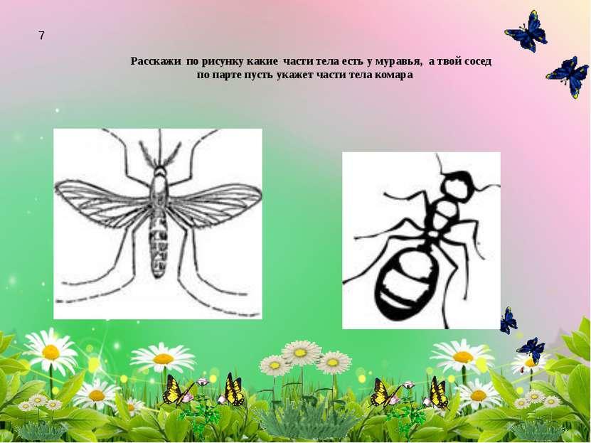 Расскажи по рисунку какие части тела есть у муравья, а твой сосед по парте пу...