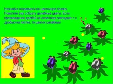Незнайка отправился на цветочную поляну. Помогите ему собрать целебные цветы....