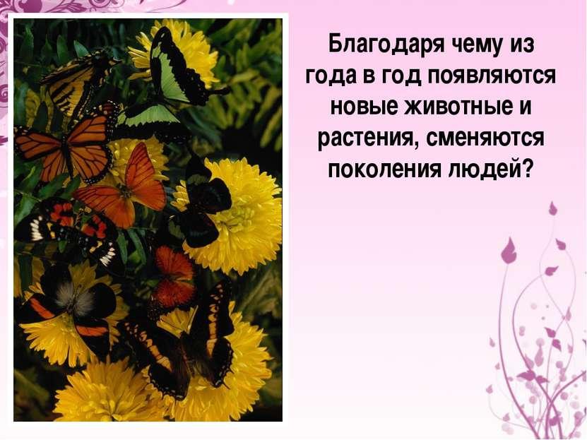 Благодаря чему из года в год появляются новые животные и растения, сменяются ...
