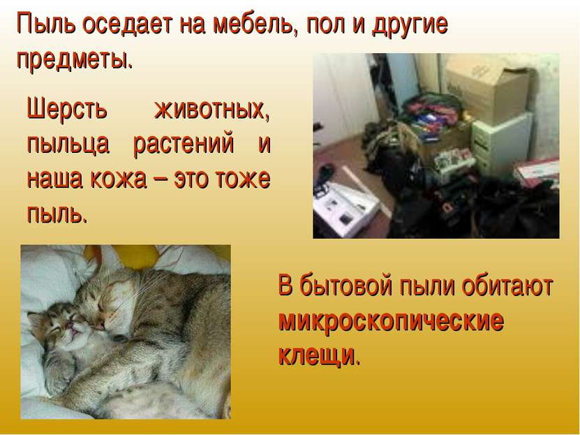 Пыль оседает на мебель, пол и другие предметы. Шерсть животных, пыльца растен...