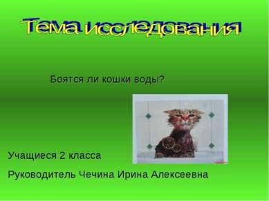 Боятся ли кошки воды? Руководитель Чечина Ирина Алексеевна Учащиеся 2 класса