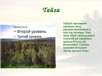 Смешанные леса «…а тут в полосе смешанных, угрюмость ели смягчена широколиств...