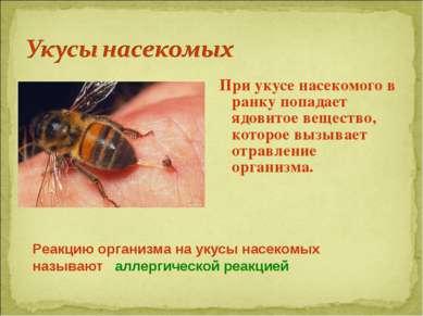 При укусе насекомого в ранку попадает ядовитое вещество, которое вызывает отр...