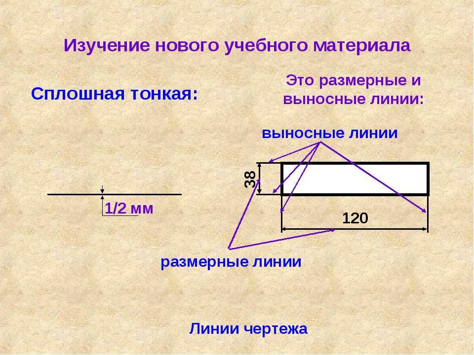 Изучение нового учебного материала Линии чертежа Сплошная тонкая: Это размерн...