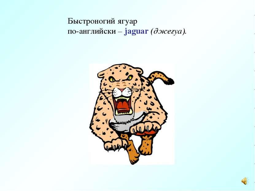 Быстроногий ягуар по-английски – jaguar (джегуа).