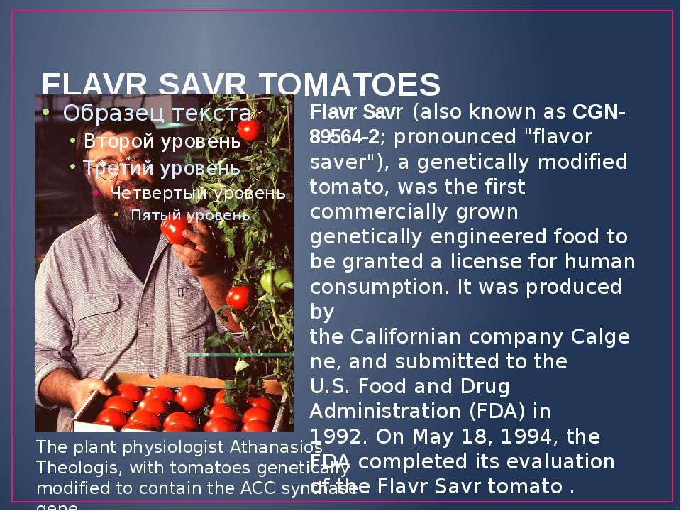 "FLAVR SAVR TOMATOES Flavr Savr (also known as CGN-89564-2; pronounced ""flavor..."