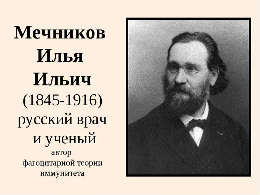 Мечников Илья Ильич (1845-1916) русский врач и ученый автор фагоцитарной теор...
