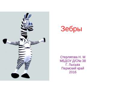 Зебры Стерлягова Н. М МБДОУ Д/C№ 38 Г. Лысьва Пермский край 2016