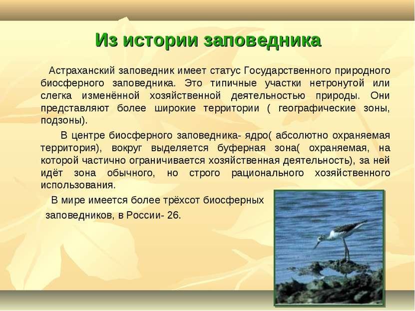 Из истории заповедника Астраханский заповедник имеет статус Государственного ...