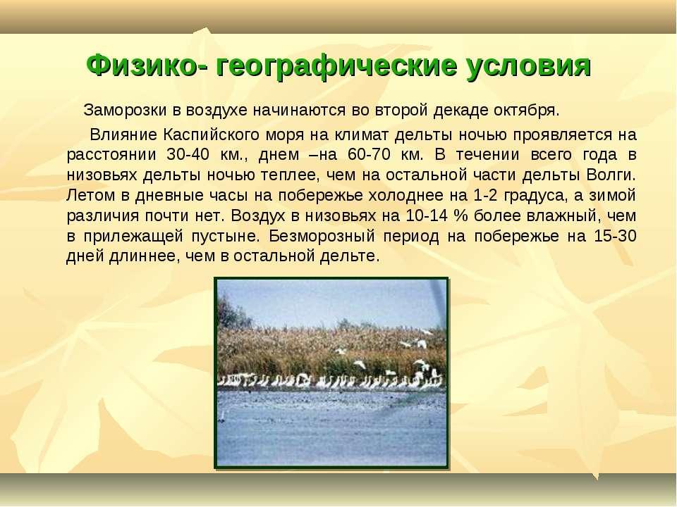 Физико- географические условия Заморозки в воздухе начинаются во второй декад...