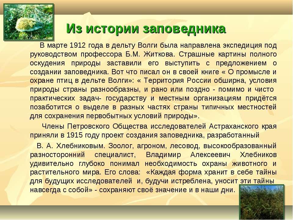 Из истории заповедника В марте 1912 года в дельту Волги была направлена экспе...