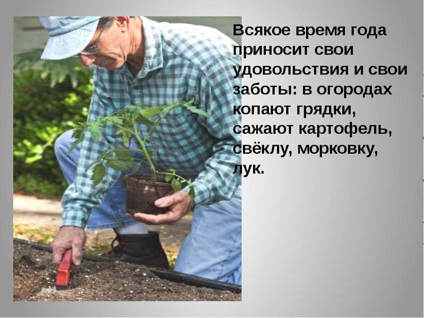 Всякое время года приносит свои удовольствия и свои заботы: в огородах копают...