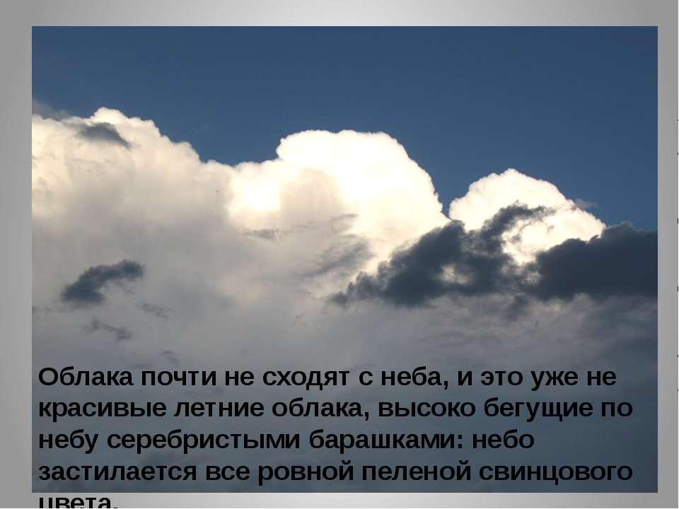 Облака почти не сходят с неба, и это уже не красивые летние облака, высоко бе...