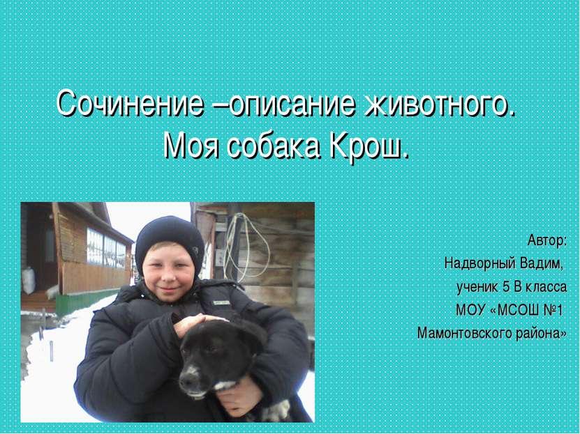 Сочинение –описание животного. Моя собака Крош. Автор: Надворный Вадим, учени...