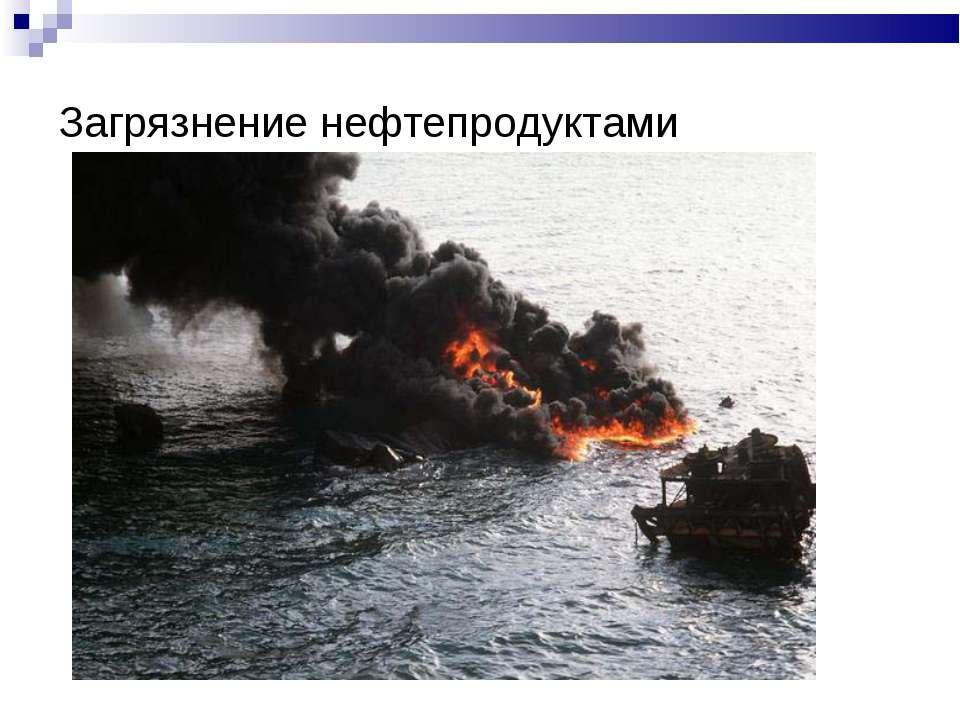 Загрязнение нефтепродуктами