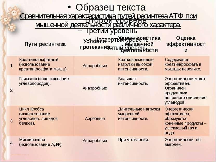 Сравнительная характеристика путей ресинтеза АТФ при мышечной деятельности ра...