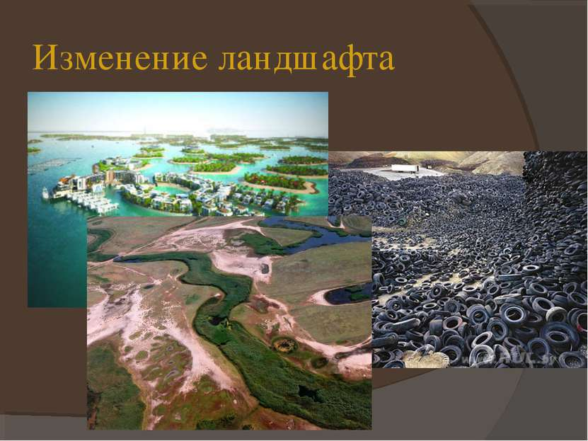 Изменение ландшафта