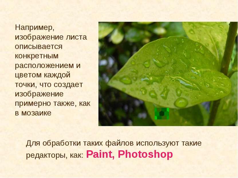 Например, изображение листа описывается конкретным расположением и цветом каж...