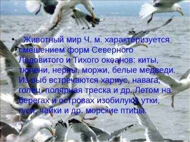 Животный мир Ч. м. характеризуется смешением форм Северного Ледовитого и Ти...