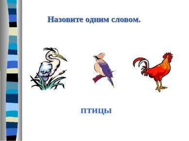 Назовите одним словом. птицы