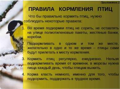 ПРАВИЛА КОРМЛЕНИЯ ПТИЦ Во время подкормки птиц не сорить, не оставлять на ули...