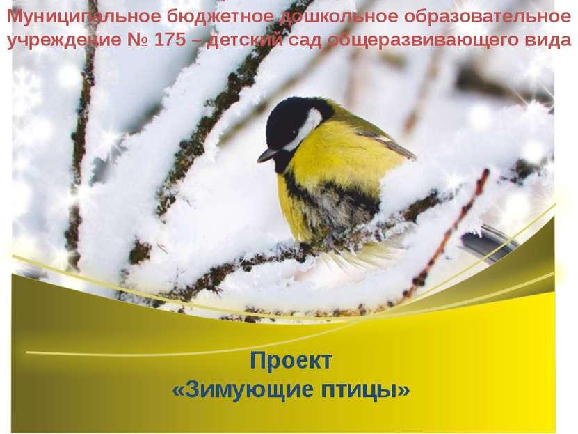 Проект «Зимующие птицы» Муниципальное бюджетное дошкольное образовательное уч...