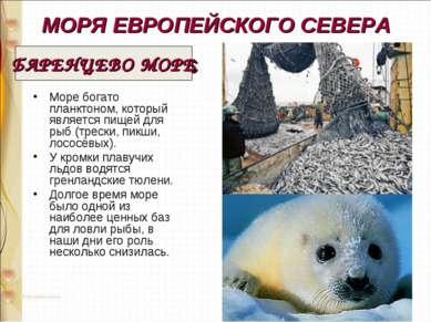МОРЯ ЕВРОПЕЙСКОГО СЕВЕРА Море богато планктоном, который является пищей для р...
