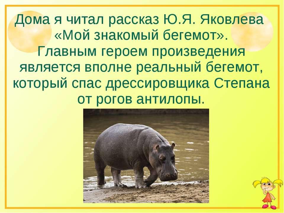 Дома я читал рассказ Ю.Я. Яковлева «Мой знакомый бегемот». Главным героем про...