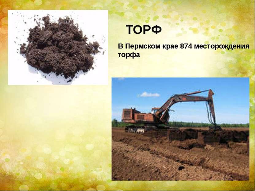 В Пермском крае 874 месторождения торфа ТОРФ