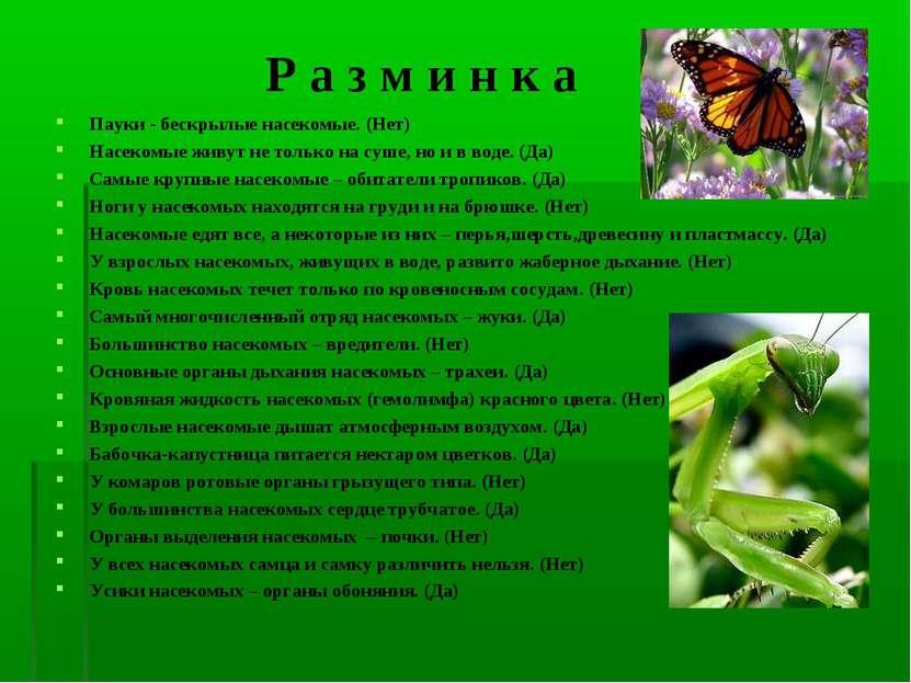 Р а з м и н к а Пауки - бескрылые насекомые. (Нет) Насекомые живут не только ...