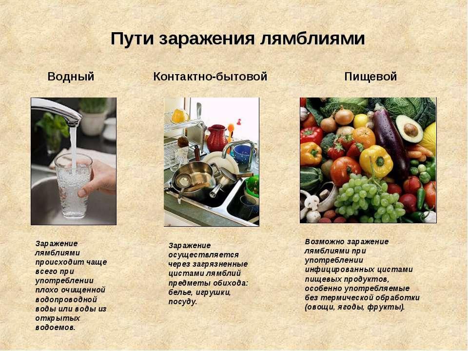 Пути заражения лямблиями Водный Контактно-бытовой Пищевой Заражение лямблиями...